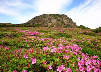 Великолепные пейзажи гор Халласан в разные времена года