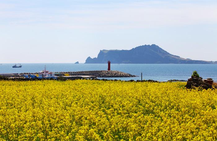 Вид на остров Удо