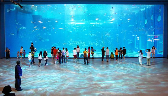 Главный аквариум океанариума Aqua Planet Jeju (сверху)