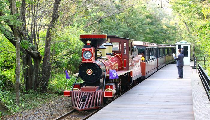 Поезд, курсирующий по парку Эколенд (сверху)
