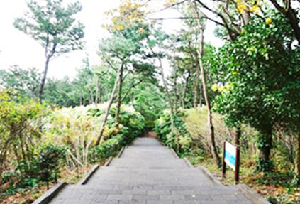 7 пешеходных маршрутов «оллекиль» на острове Чечжу (снизу)