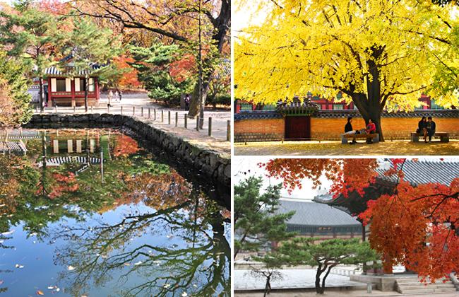 朝鮮王陵の画像 p1_25