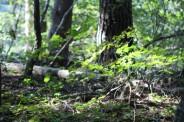 공주 산림휴양마을