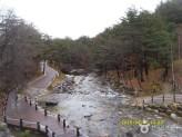 강릉 솔향수목원