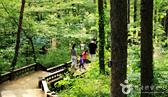 자연에 안겨 쉬어가는 시간, 숲속 놀이터, 느림의 시간이 담긴 쉼터