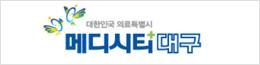 대한민국 의료특별시 메디시티 대구