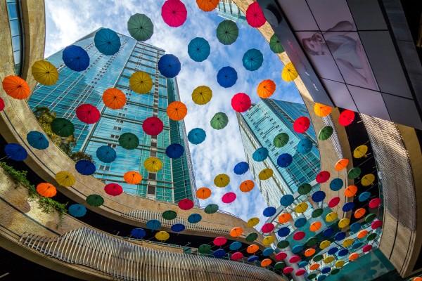 Umbrella mania