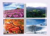 대한민국의 사계절을 표현한 포스터