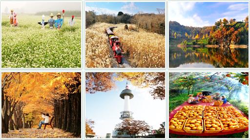 Уборка урожая осенью картинки
