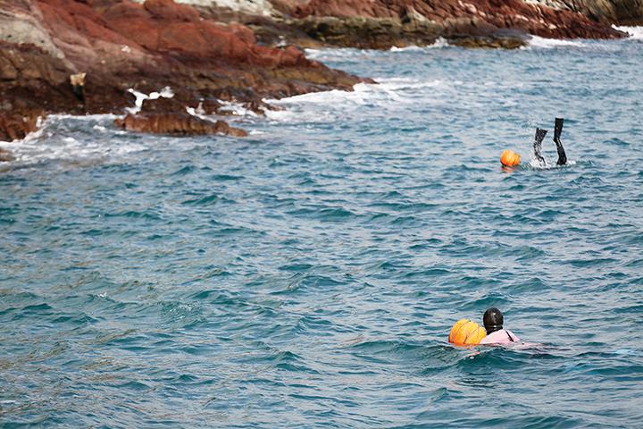 바다속을 오가며 물질 중인 두명의 해녀