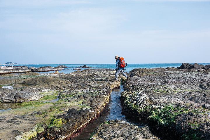 물빠진 해안가 바위길을 걸어가는 남자
