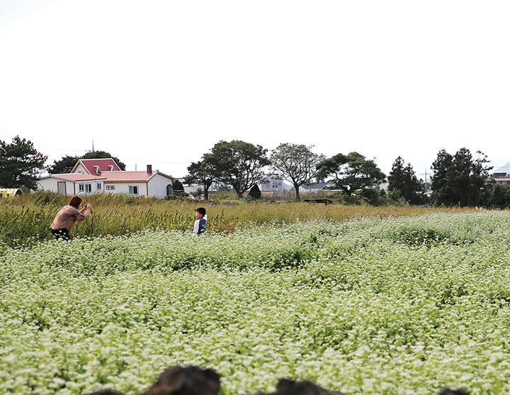 동광환승센터 인근 풍경