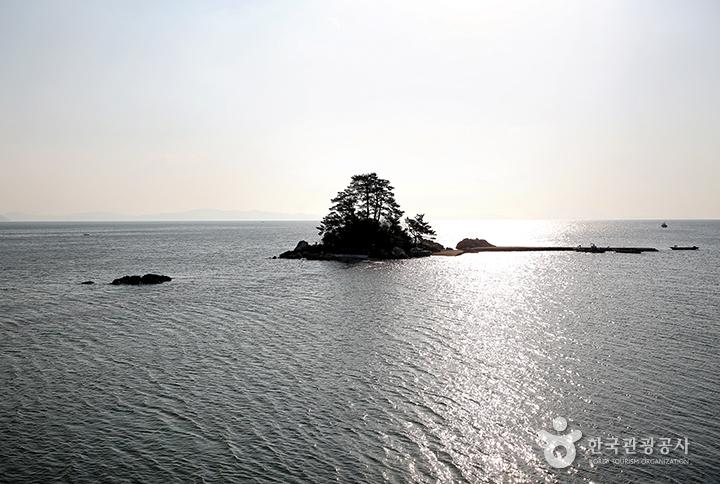 남포마을 바로 앞에 떠 있는 소등섬
