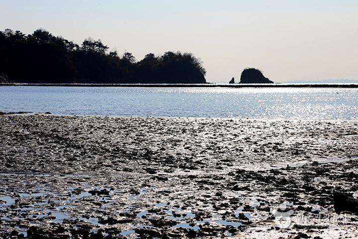 백미리 어촌체험마을의 풍경, 섬 하나가 우뚝하다