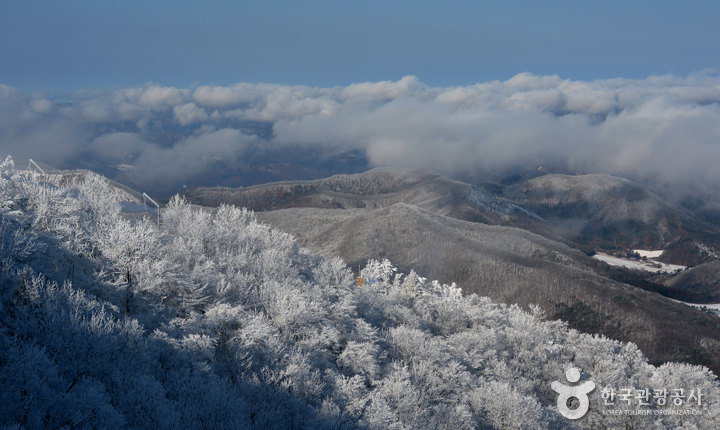 눈으로 뒤덮인 오대산의 전경