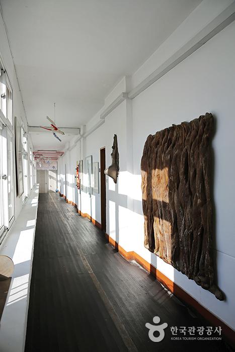 폐교된 초등학교에 문을 연 무이예술관 내부, 복도 전시관