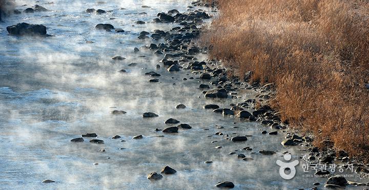 물안개 피어나는 정선의 강가