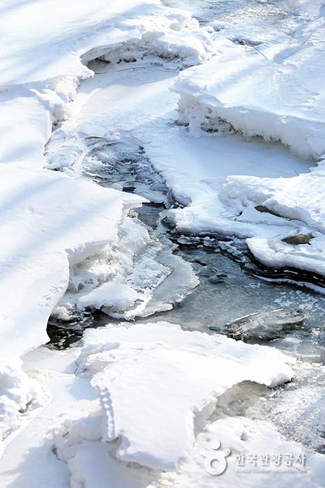 얼음과 눈으로 뒤덮인 산책로 옆 계곡