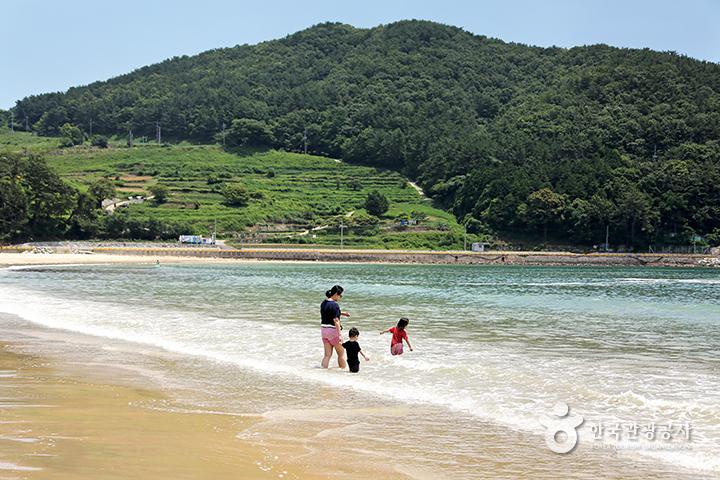 상주은모래비치 바다에 발을 담그며 걸어가는 엄마와 아이둘