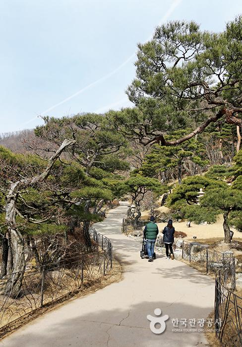 화담숲 산책길을 걸어가는 가족