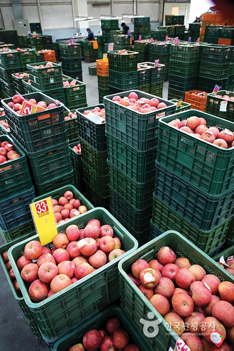 농산물 도매시장 수많은 사과상자