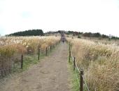 가을의 끝, 다가오는 겨울을 기다리며 즐기는 경주 트레킹 전경
