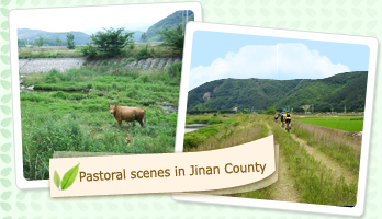 Pastoral scenes in Jinan County