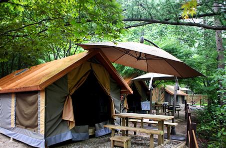 텐트에서 계곡까지, 아낌없이 주는 소백산 남천풀옵션캠핑장