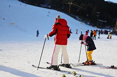 가까운 스키장에서 즐기자! 서울 근교 스키장 열전