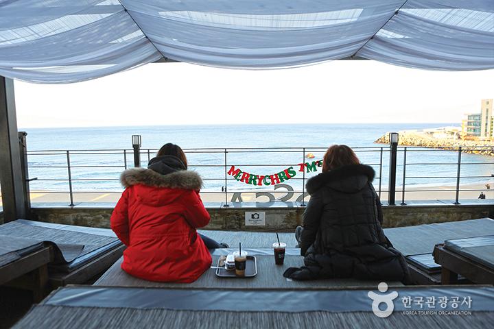 [주말여행법] 강릉 안목해변 카페 순례