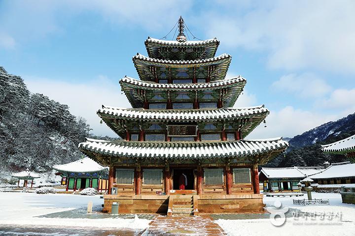 산사, 한국의 산지승원