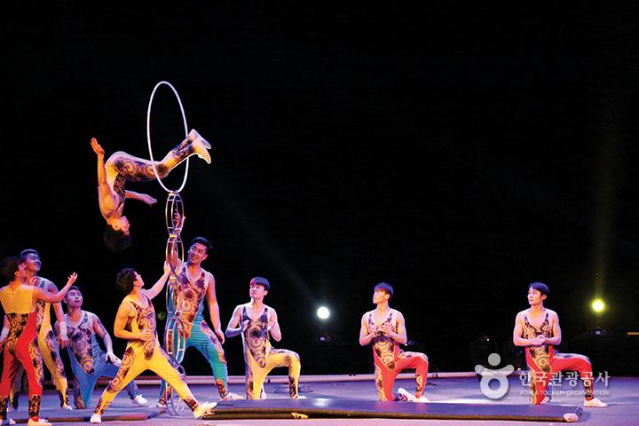 백 년 역사를 헤아리는 동춘서커스 단장 박세환