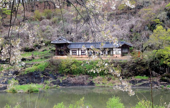 세상의 모든 초록이 피어나는 봄날의 금강