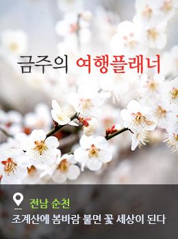 산에 봄바람 불면 꽃 세상이 된다
