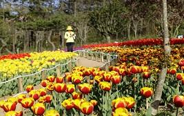 부모님 모시고 함께하는 孝여행! 봄날의 꽃 릴레이 또는 제철 별미!