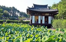 02, 강릉의 예술가를 만나는 감성 충전 여행