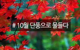 가을 속으로 진하게, 단풍여행