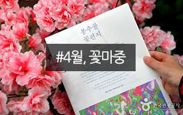 4월은 꽃의 계절, 즐길 수 있을 때 즐기자!!