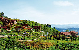 산꼭대기 별장에서의 완벽한 여유 국립산림치유원 재충전 여행
