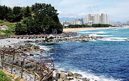 65년간 감춰졌던 동해안의 비경, 속초의 새로운 명소 '바다향기로'