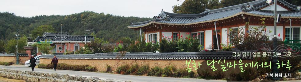 금빛 닭이 알을 품고 있는 그곳.봉화 달실마을에서의 하루.경북 봉화 소재