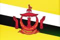 브루나이 국기