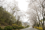 금오산도립공원
