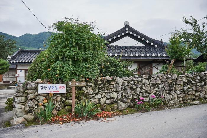 강릉 해살이마을 개두릅축제 2019