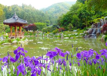 韓國~自然與藝術併存的京畿道2天1夜之旅