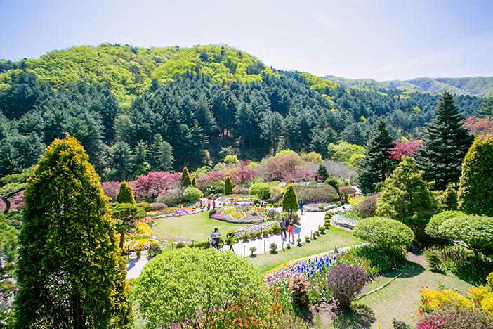 【韓國】尋訪首爾近郊熱門療癒景點