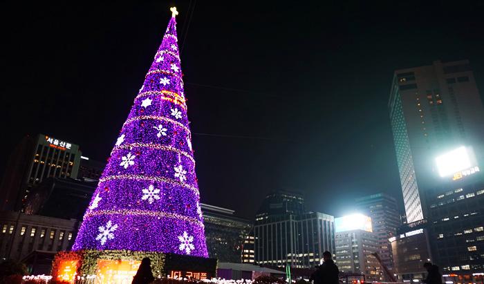 Conoce a los árboles más grandes de Corea del Sur para esta Navidad.  